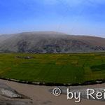 Grünes Tal in mitten der Wüste