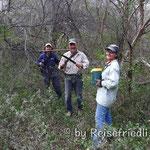 Dschungelmarsch mit der Machete