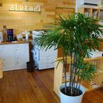 植物もあるゆったり空間