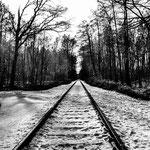 Winterwald-7