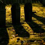 Friedhofsansicht-3