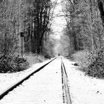 Winterwald-4