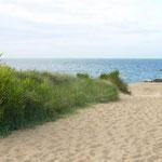 la plage du petit port