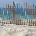 plage sauvage avec dunes