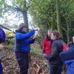 November 2011 Mammal Survey