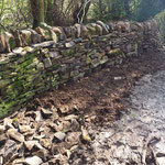 Tidy up over outlet & boggy area by wall