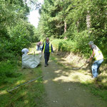 Raking cut grass from the edge of the ride at the west end of the wood.  A tidy up exercise with much chatter and laughs.