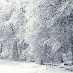 Winter im Deilbachtal