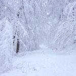 Winter im Bergischen Land