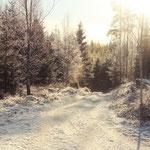 Winter in Schweden, Smaland