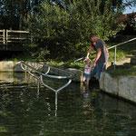 Kaltes Wasser, ein natürlicher Jungbrunnen für jedermann