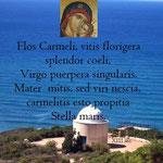 7° giorno: Le più antiche invocazioni alla Madonna nel Carmelo (XIII sec.).