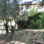 Careggi - Carmelo S. Maria degli Angeli e S. M. Maddalena de' Pazzi - Giardino