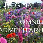 7° giorno: Regina omnium carmelitarum: ora pro nobis et omnibus.