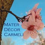 2° giorno: Mater Decor Carmeli, ora pro nobis et omnibus.