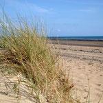 Les dunes de Portbail