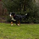 Pepe hat seinen Spaß im Garten.