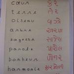 Les 9  mots  OISEAUX traduits par une indienne du village