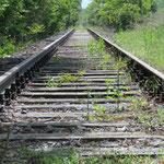 letztes Stück Eisenbahnschiene auf badischer Seite vor der Brücke; © alle Fotos P. Diziol
