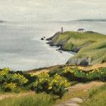 Howth Head Cliffs, Öl (verkauft/ sold)
