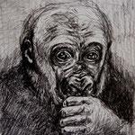 Gorilla, Bleistift (unverkäuflich)