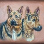 Schäferhunde Lolle und Neo, Öl (Auftragsarbeit)