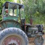Dreirad gibt's also auch bei Traktoren...