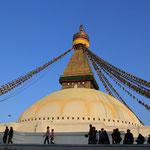 Bevors nach Pokhara geht noch ein Milktea bei der Boudhanath Stupa, ein magischer Platz!