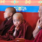 Grübelt der Meister in den Ohren, hat er die Aufsicht verloren :) Peace forever!