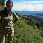 Aussicht vom Mount Robert