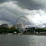 Flussfahrt auf dem Brisbane River...