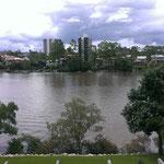 Ausblick auf den Brisbane River