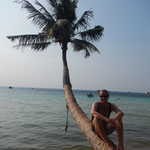 Ko Tao...eine bekannte Palme fuer die die schon mal hier waren ;-)