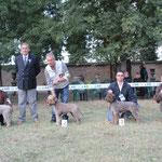 OTTO - Prop. Fabrizio Caira - 3° ECC. RADUNO C.I.L. BAGNARA 15-10-11