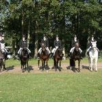 Die komplette Ponyabteilung