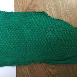 Barsch waldgrün (5)