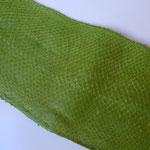 Lachs apfelgrün (77)