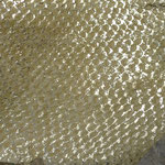 Barsch Gold (85)