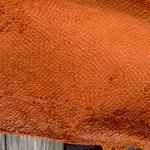 Dorsch orange (124)