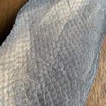 Lachs grau-blau/kupfer Schimmer (209)