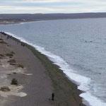 Plage de Candelas, les baleines approchent du rivage !