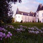 Parc - Château de Condé - Condé en Brie champenoise de Picardie