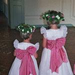 fêtes et mariages - Château de Condé - Condé en Brie champenoise de Picardie