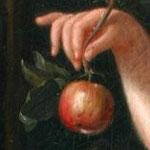 Apple - Château de Condé - Condé en Brie champenoise de Picardie