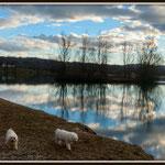 lac de Romagnieu