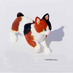 三毛猫 1