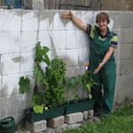 Dagmar hilft uns bei der Pflege der Pflanzen