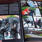 Bericht Tierumzug Schlosshof
