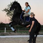 Training Wr. Familientage, Krieau