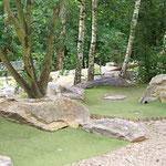 Piste du Mini Golf - calme sous les arbres